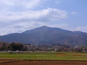 ooyama1000