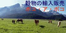 穀物の専門商社ポコ・ア・ポコ